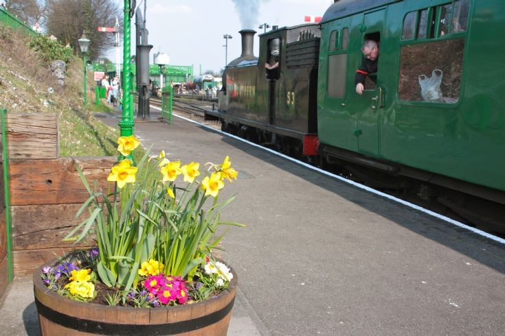 Springtime at Ropley.