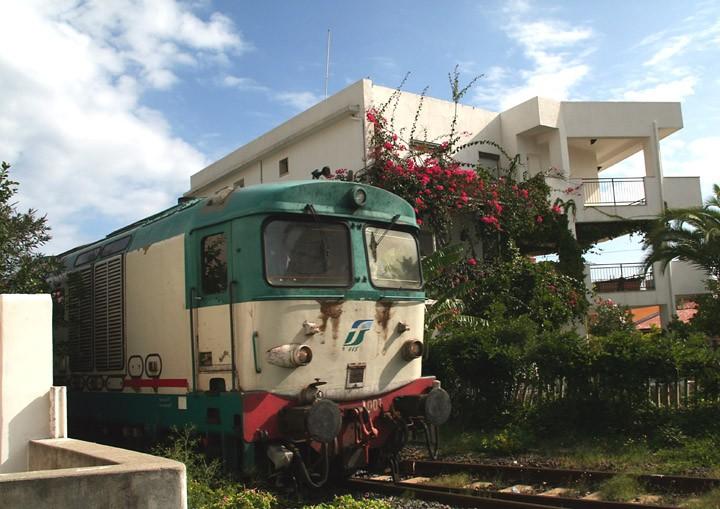 Class D445 Bo-Bo diesel locomotive no. 1001