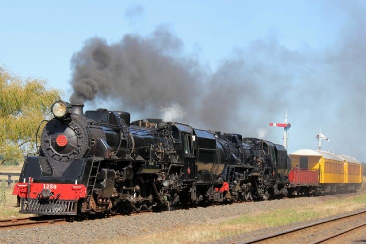 Double Ja 4-8-2 at Glenbrook Vintage Railway  2