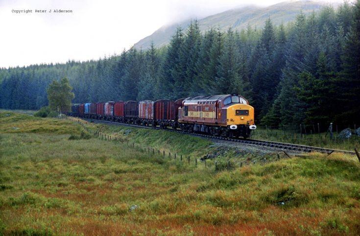 37408 7Y42 Logs at Crianlarich