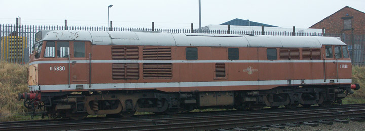 Brush Class 31 diesel D5830