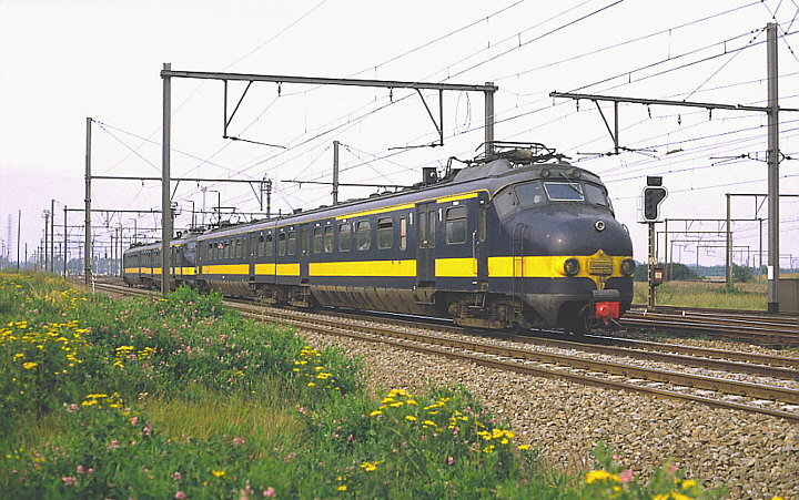 NS 1207 + 1203