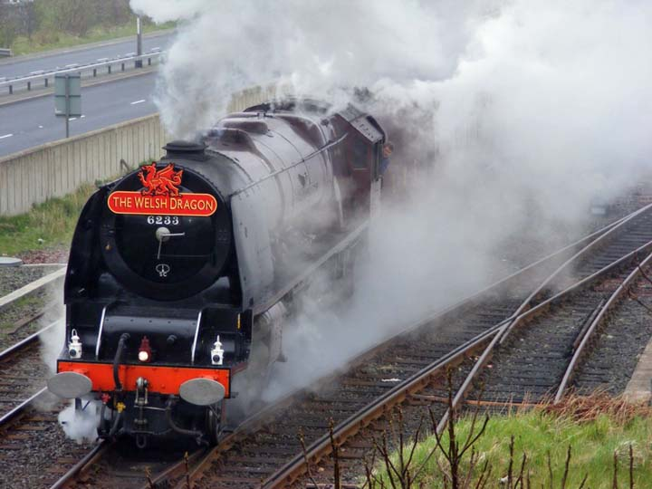 The Duchess of Sutherland - Welsh Dragon