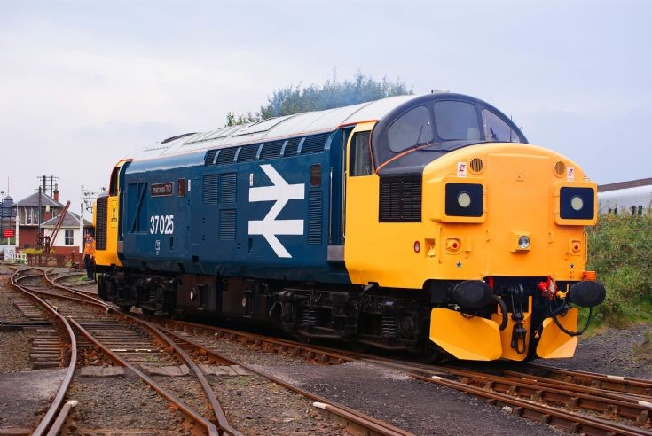 'Inverness TMD'