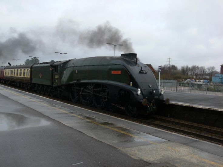 Steam locomotive Bittern at Newton Abbot