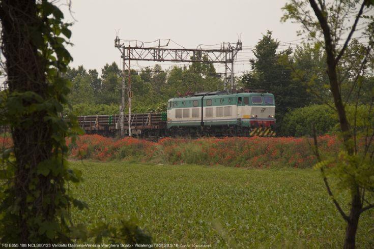 E655.188 in the nature